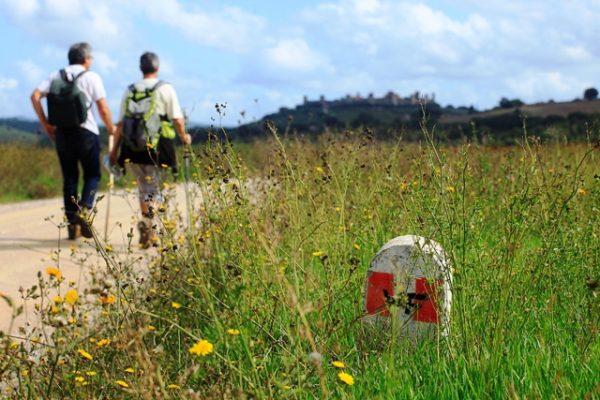 La via Francigena tra Abbadia a Isola e Monteriggioni (SI), Toscana, Italia, Europa